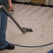 Steam Carpet Cleaning Process